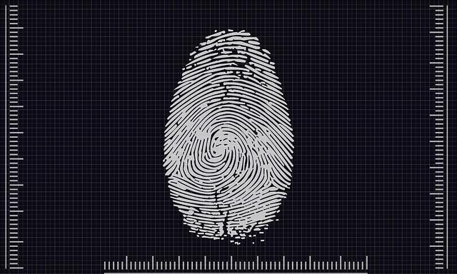 biometrics 4503187 640